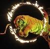 Цирки в Красном-на-Волге